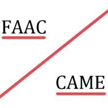 "Обзор автоматики брендов ""Came"" и ""Faac"""
