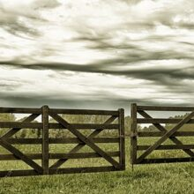 Выбираем ворота для дачи